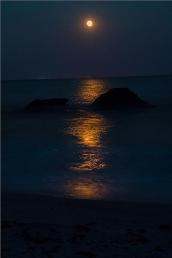 Moonlight in Waves, Buzzards Bay