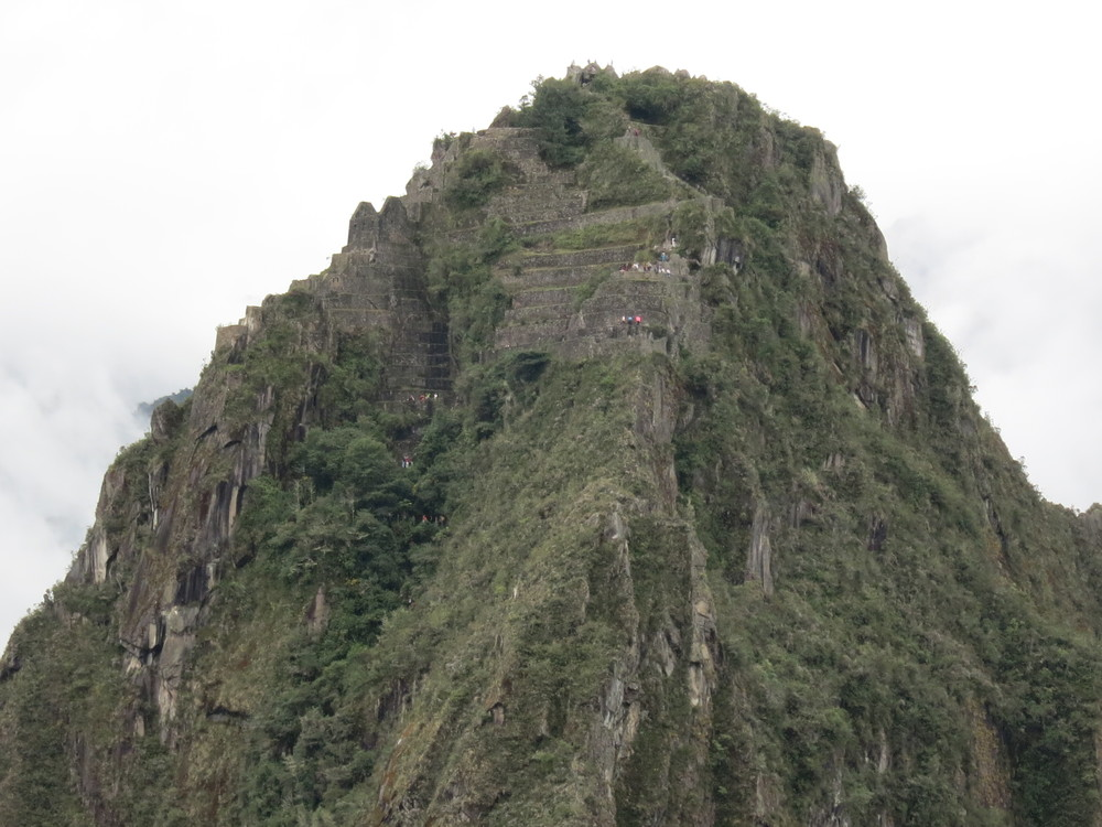 Zoomed in view of the terracing at the top of Waynapicchu
