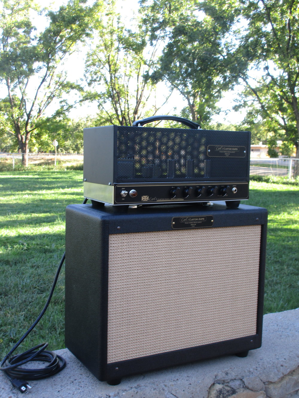 Head with FX Loop,   open back extension cab and black cage!