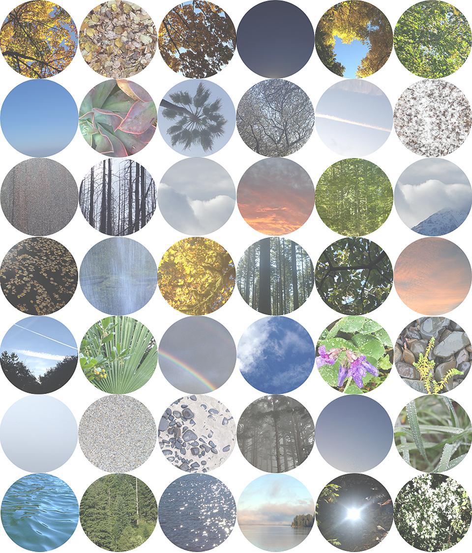 Circular Nature.jpg