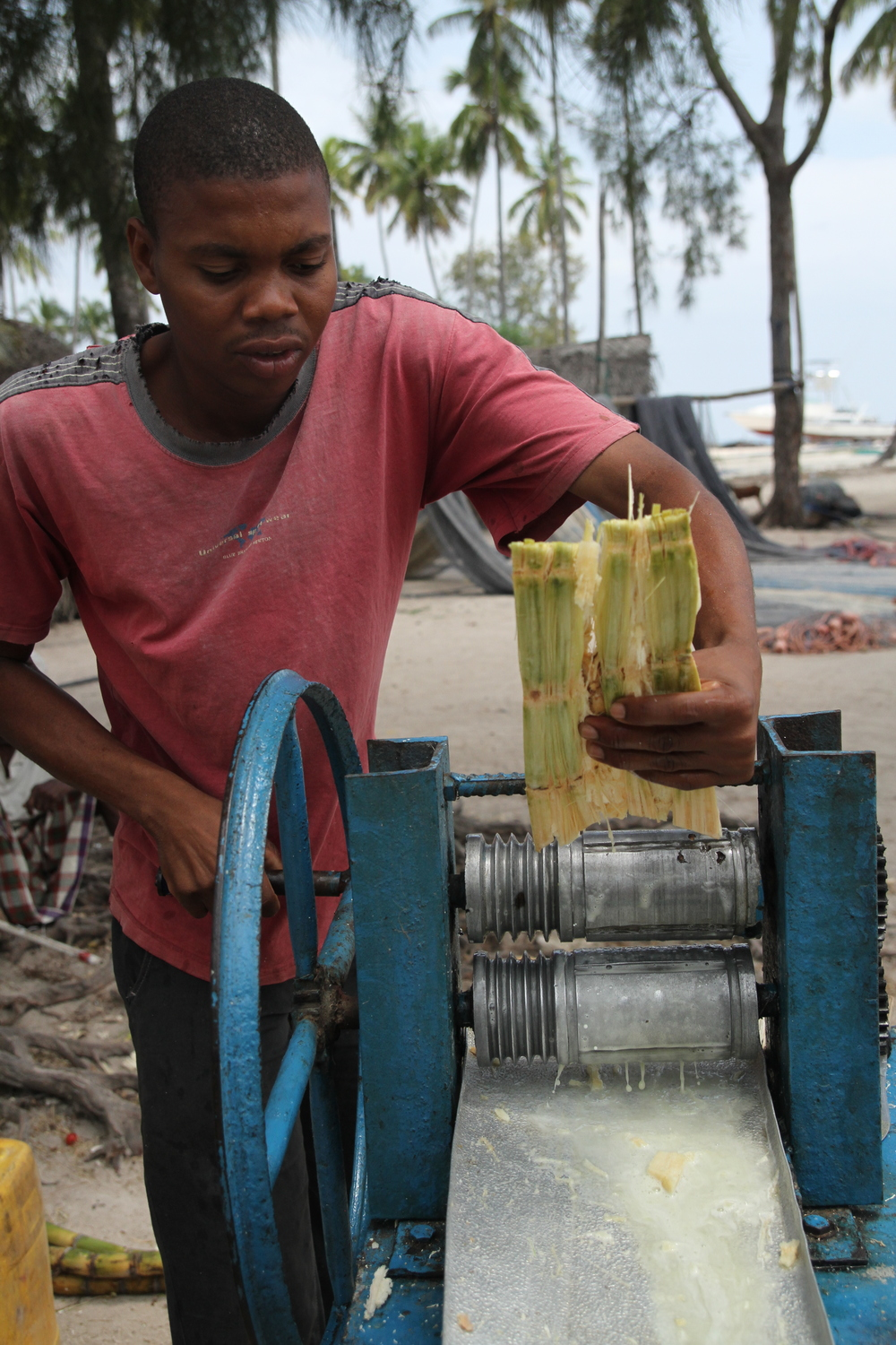 Fresh-squeezed sugar cane juice, with ginger and lime. Delicious.
