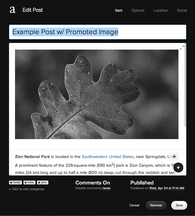Example of the Squarespace Blog Editor