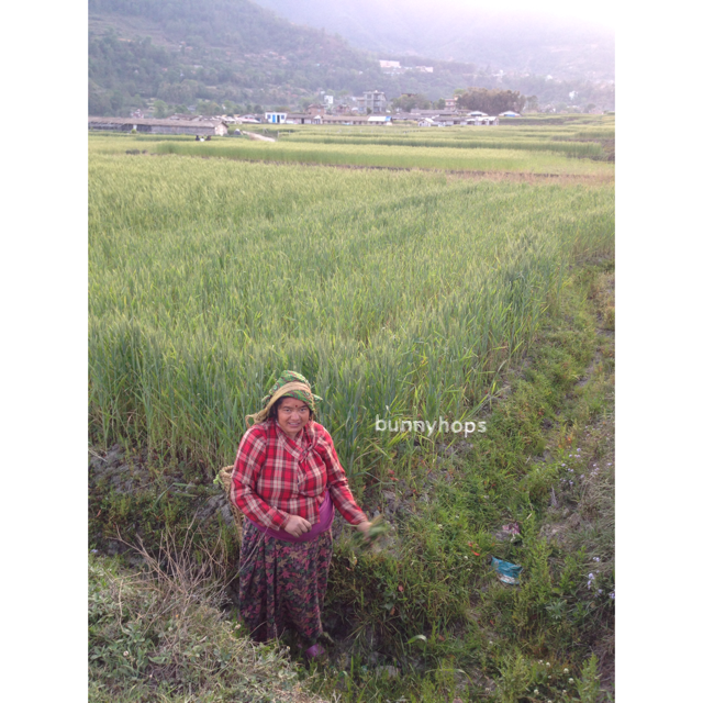 we met her in the wheat fields of langol village in kirtipur