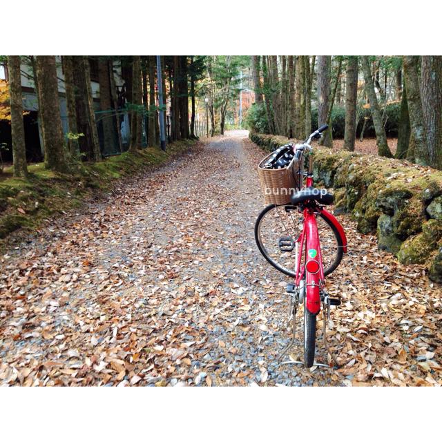 karui bike