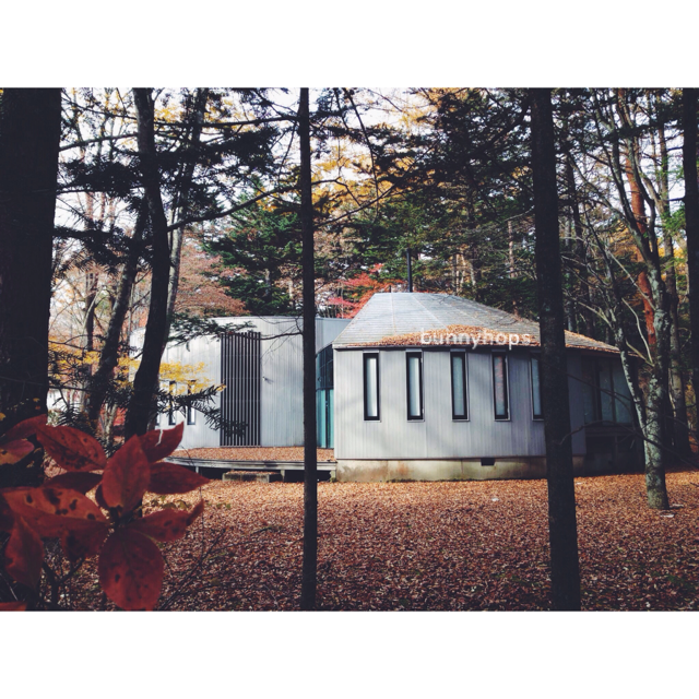 karui house in the woods