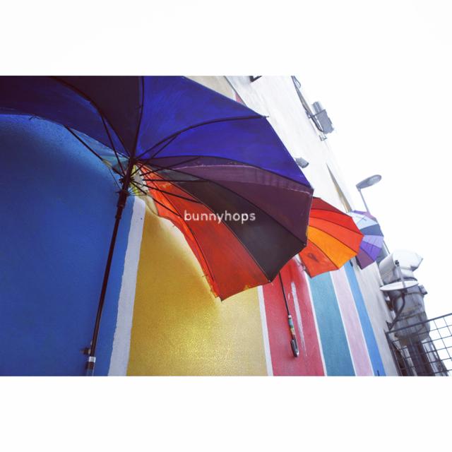 laman umbrellas
