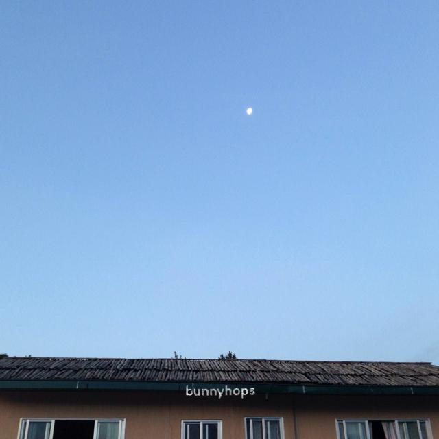 rani sky moon