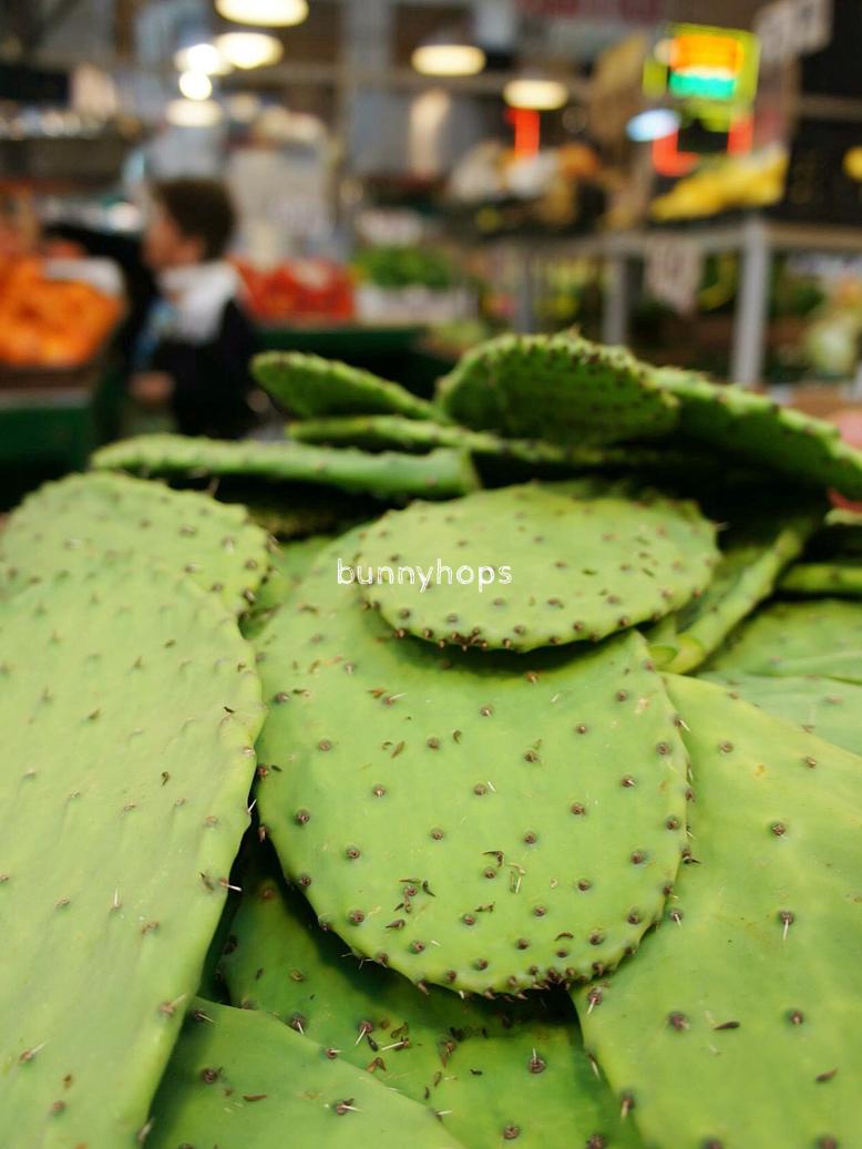 la mkt cactus
