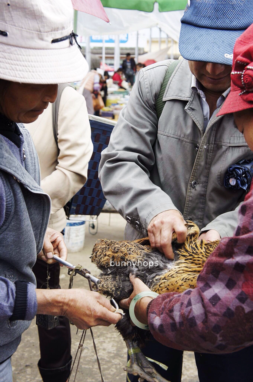 Chicken buying is a lively, noisy event at the weekly market.JPG