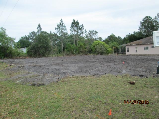 Auburn Custom Homes Land Clearing 1 Waterford Palm Coast Florida 1.JPG