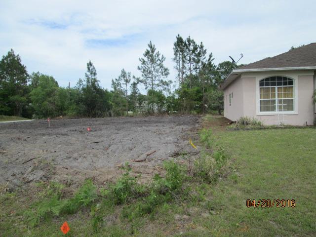 Auburn Custom Homes Land Clearing 1 Waterford Palm Coast Florida 3.JPG
