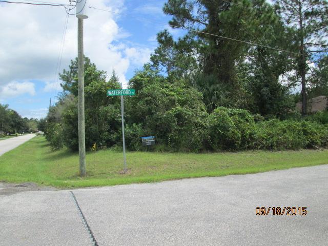 Auburn Custom Homes Palm Raw Lot 1.JPG