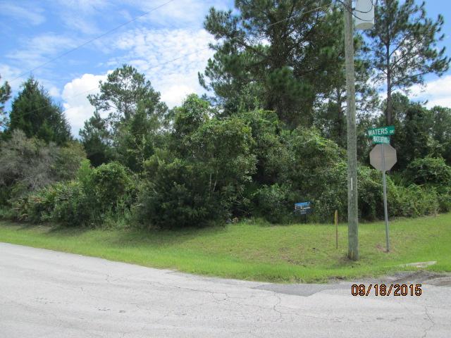 Auburn Custom Homes Palm Raw Lot 2.JPG