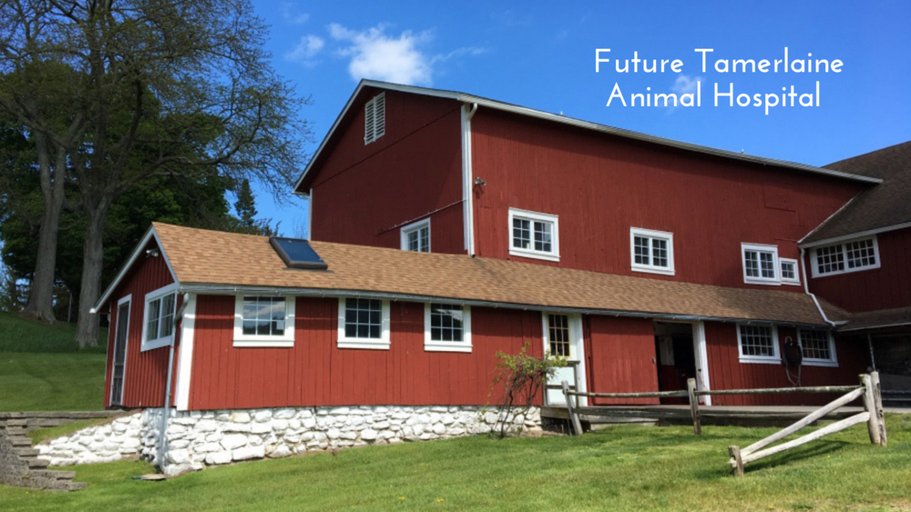 For corporate (for-profit and nonprofit) memberships, barn naming opportunities and program sponsorships, contact us directly.