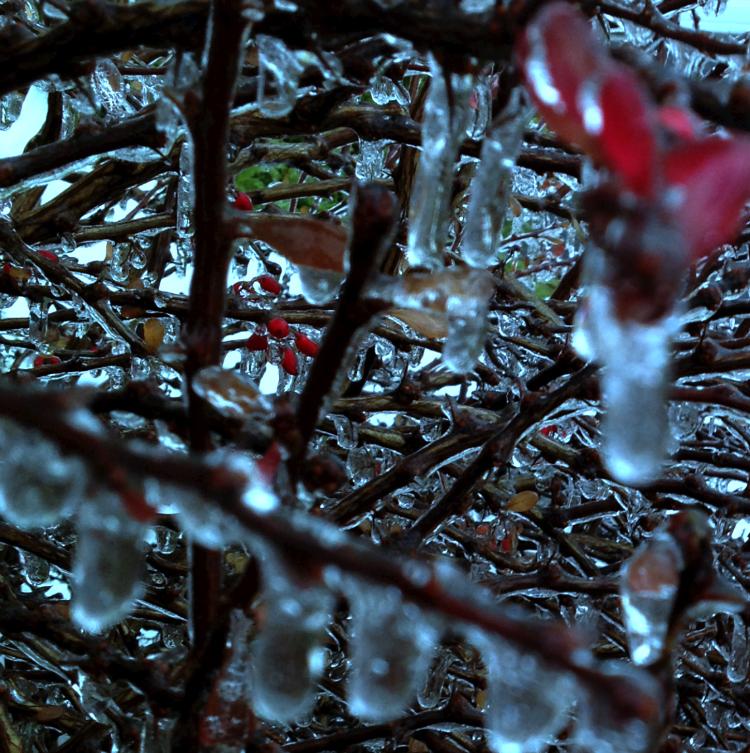 icestorm122213ed3.jpg