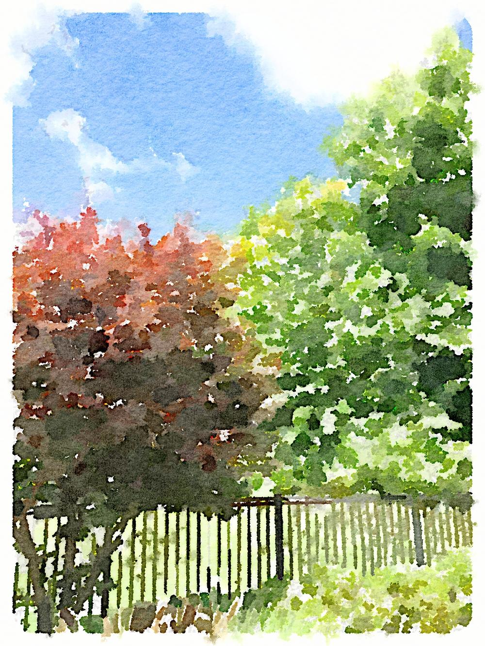 2014-08-28 12.35.58.jpg