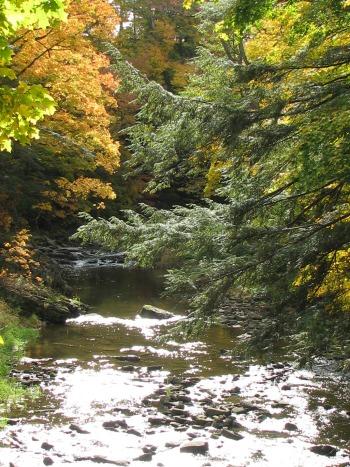 Hiking in Balls Falls area 2008