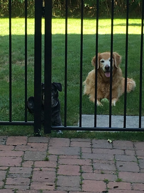 Why are you keeping us out here, Mom?