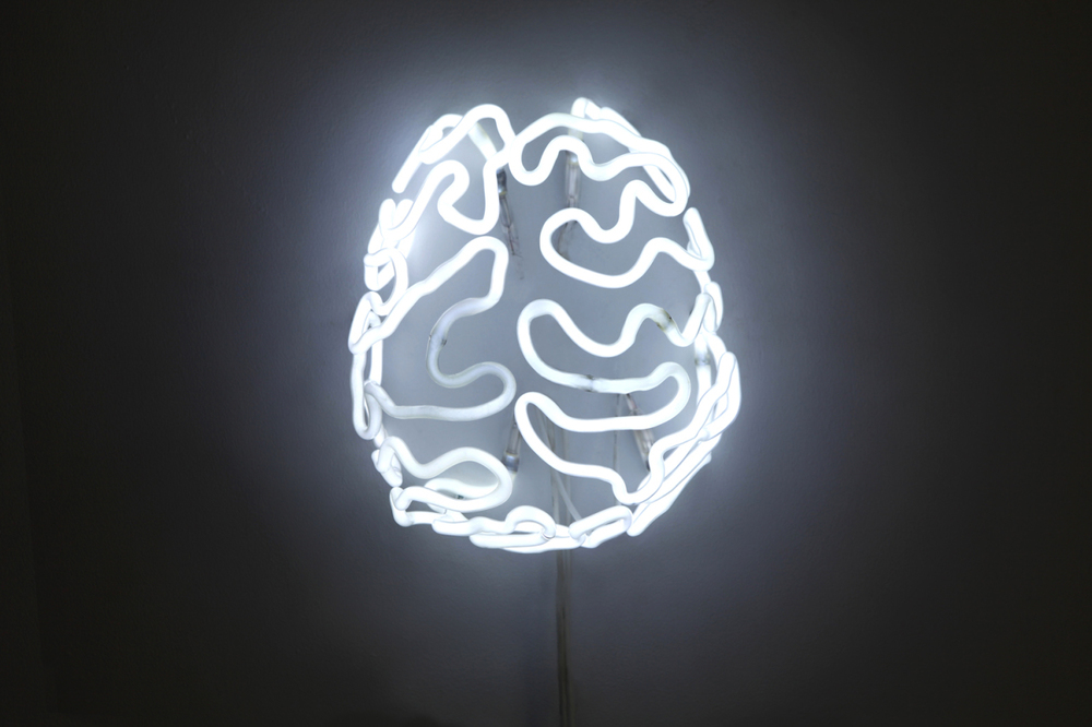 Xia Guo,  Neon  No.4 ,  2012, mixed media and fluorescent light fixtures, 25 x 22 x 16 cm