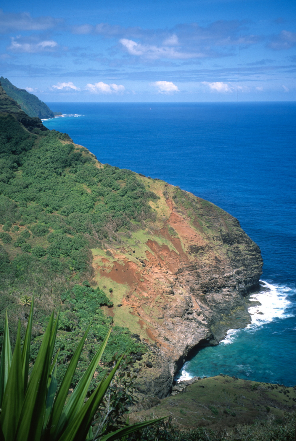The Kalalau Trail follows the folds of the cliffs, climbing in and out of deep, narrow valleys.