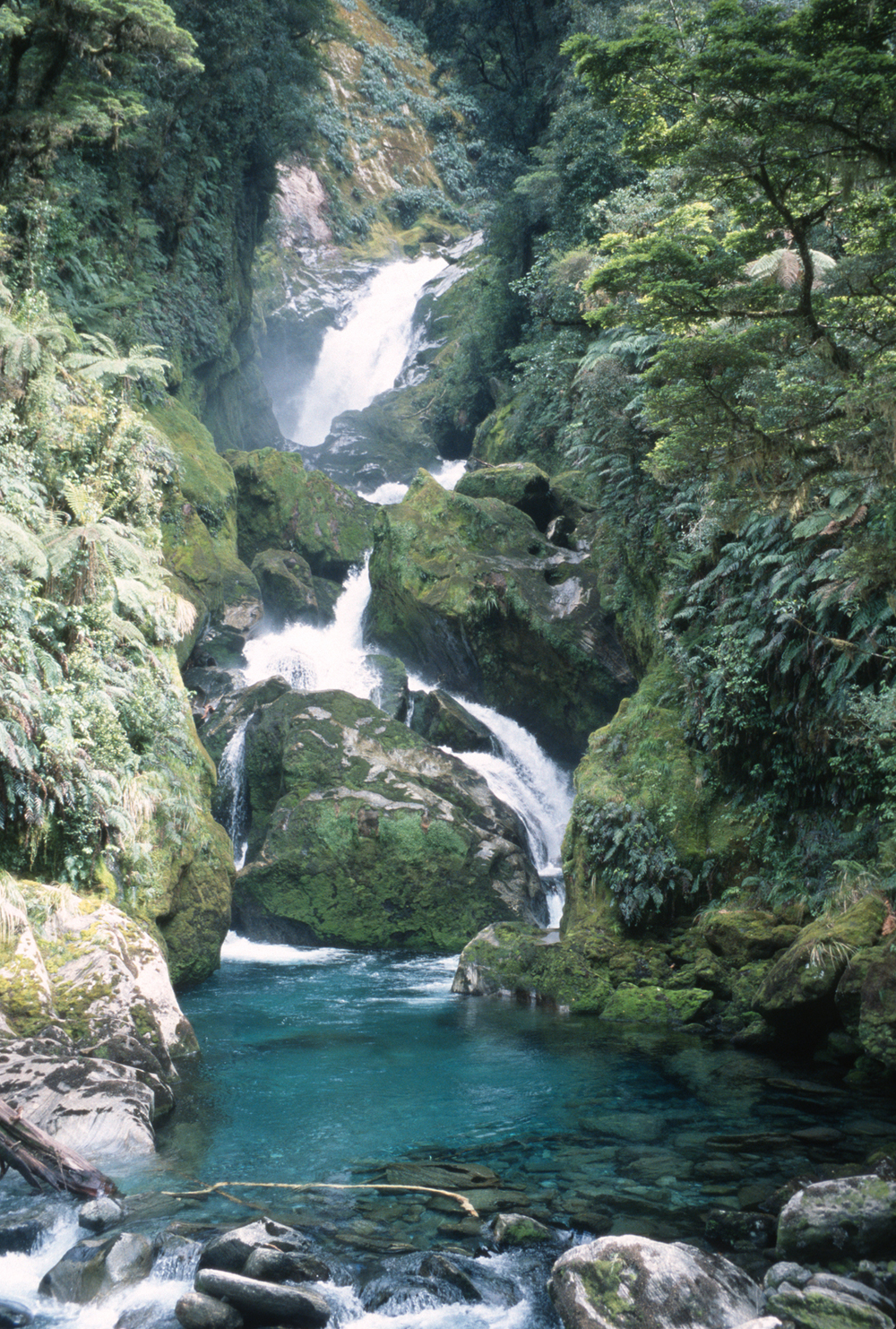 The rainforests of the Milford Track give rise to many waterfalls and cascades.