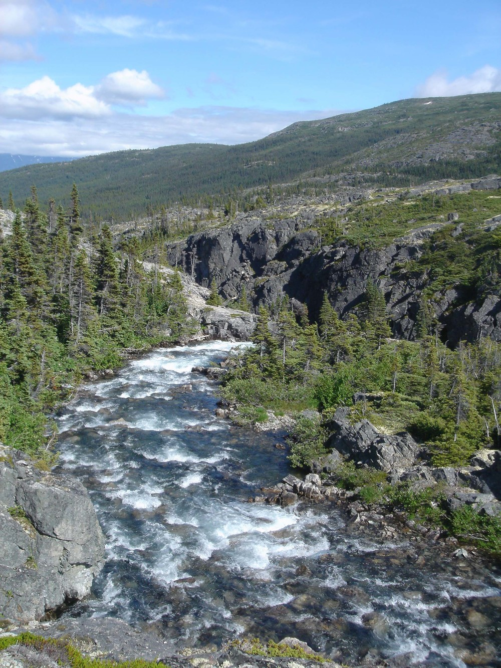 The Chilkoot Trail follows great northern rivers through British Columbia.
