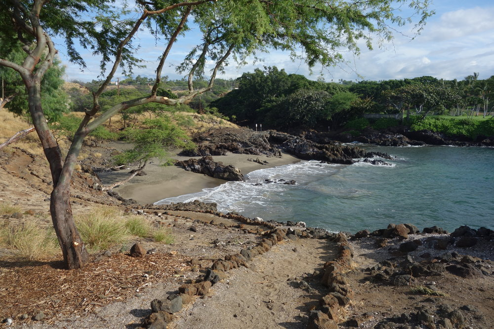 Much of the Ala Kahakai National Historic Trail runs directly on the gorgeous coastline of the Island of Hawaii.