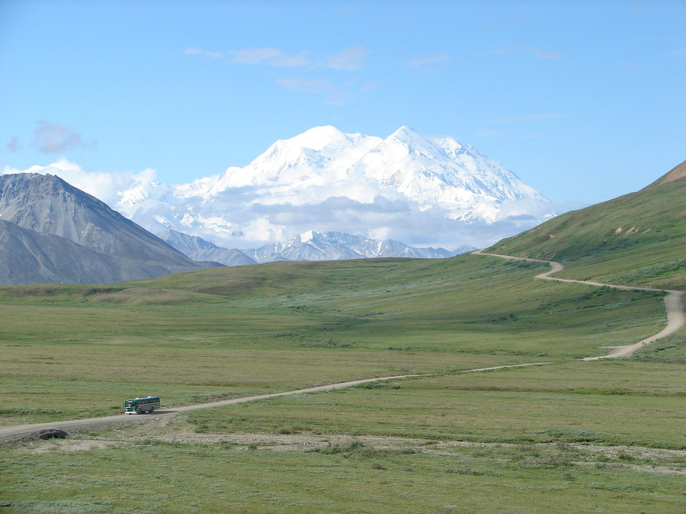 The Denali Park Road runs 92 miles into the park, and buses will drop off and pick up hikers nearly anywhere along its path.