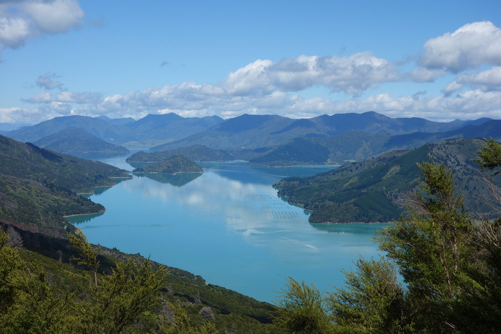 The Queen Charlotte Track rises and falls along its route, but climbs to ridgelines and descents to isolated beaches are moderate.