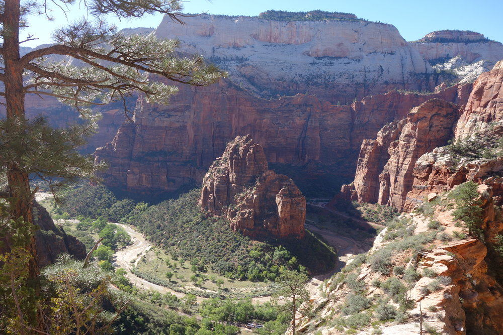 The descent along the Observation Point Trail opens to sweeping views of stunning Zion Canyon.