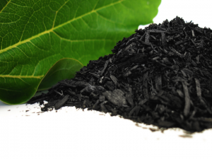 Biochar (for Soil).png