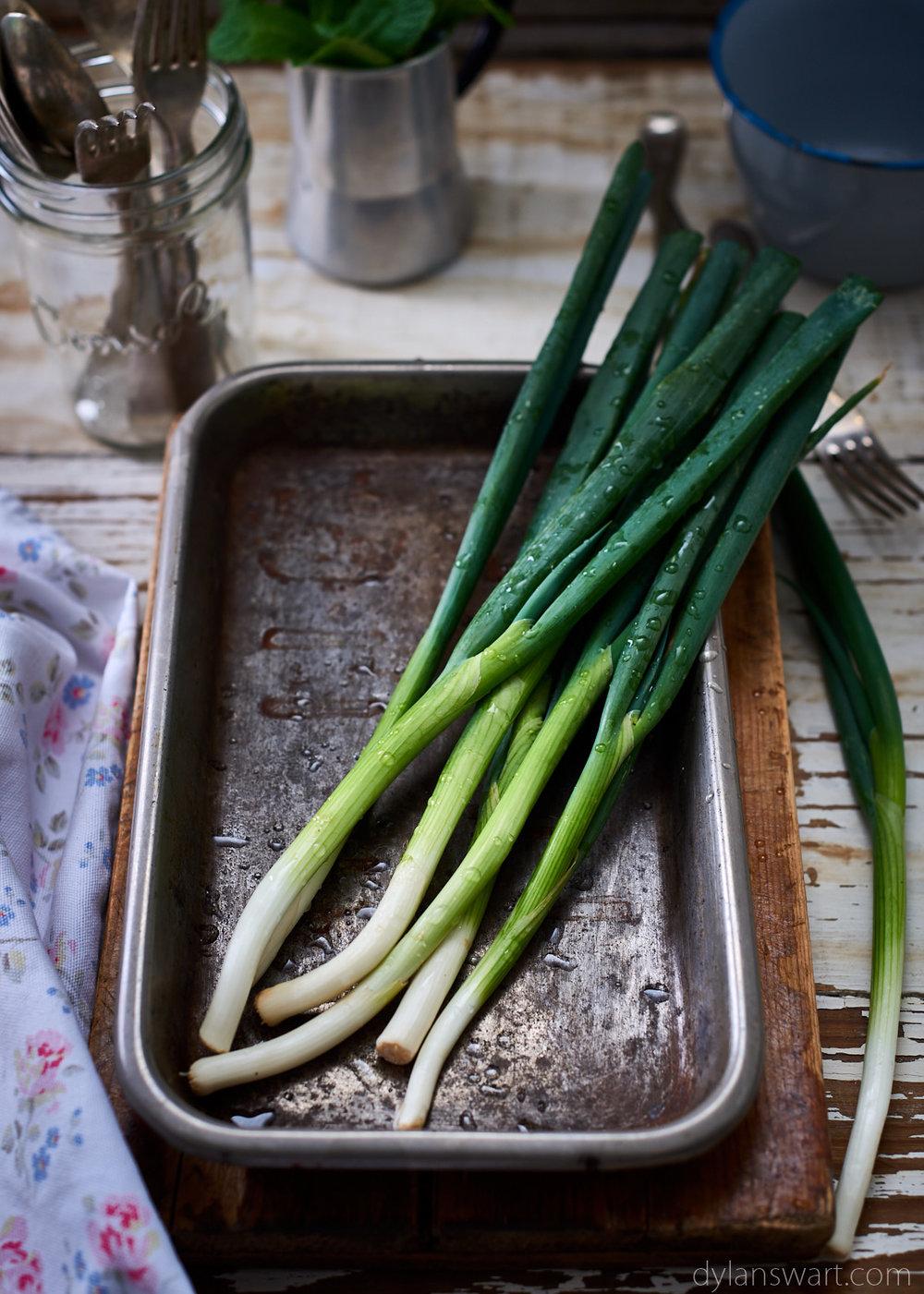 Spring Onion.jpg
