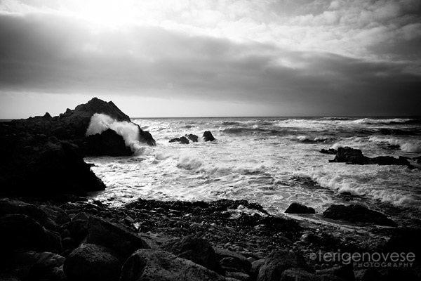 Fine Art Photograph  |  Carmel, California