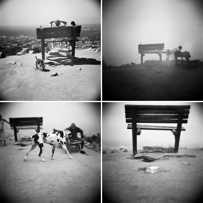 runyon canyon bench photography | hollywood, california