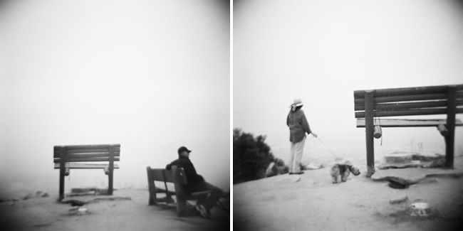 runyon canyon bench series - hollywood, california
