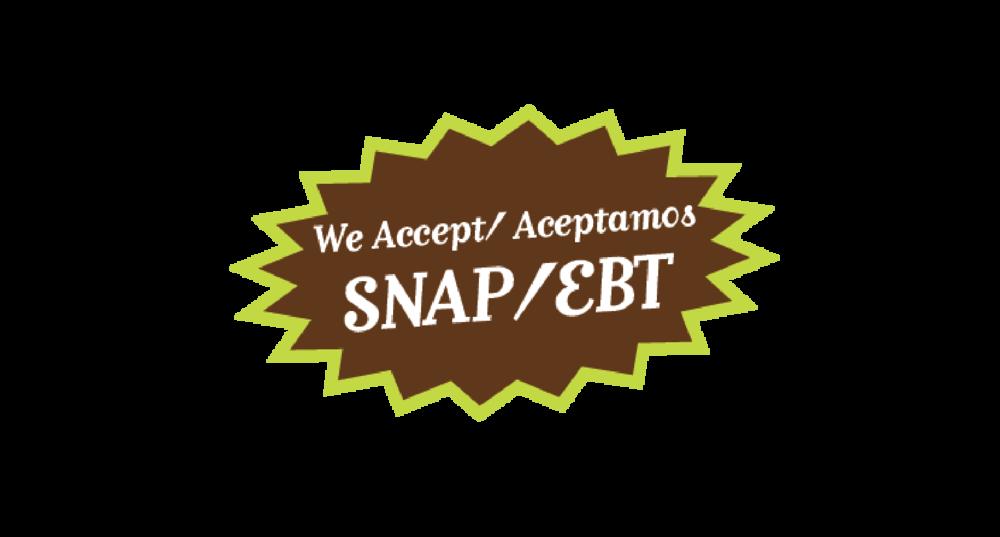SNAP04-03-01.png