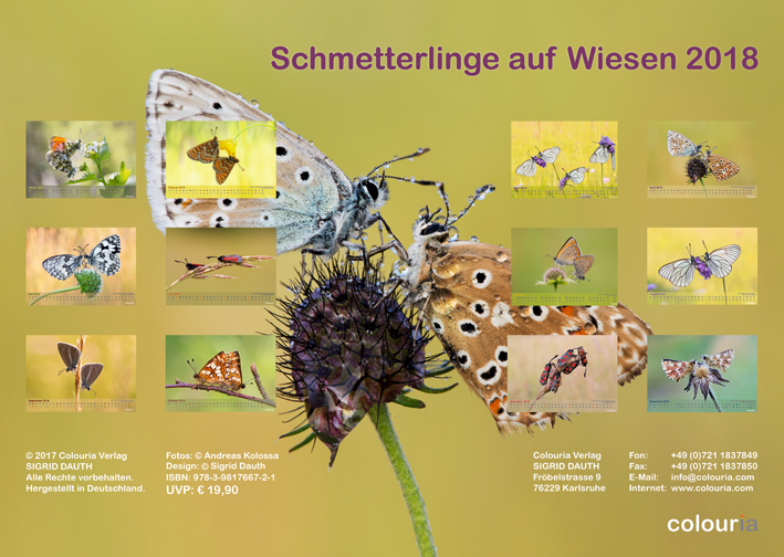Schmetterlinge_2018_Rueckseite_OK_6cm_sRGB.jpg