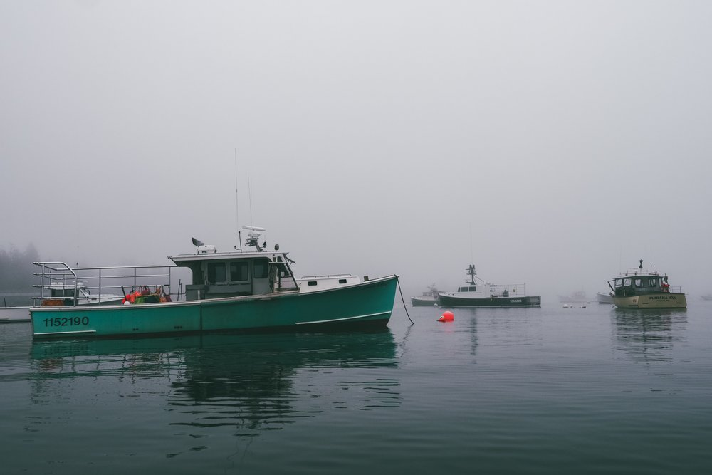 Little Cranberry Island's harbor in the fog.