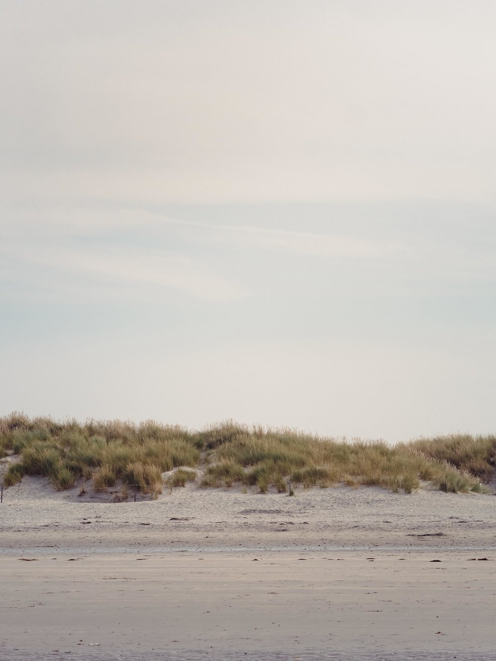 The dunes on West Wittering Beach