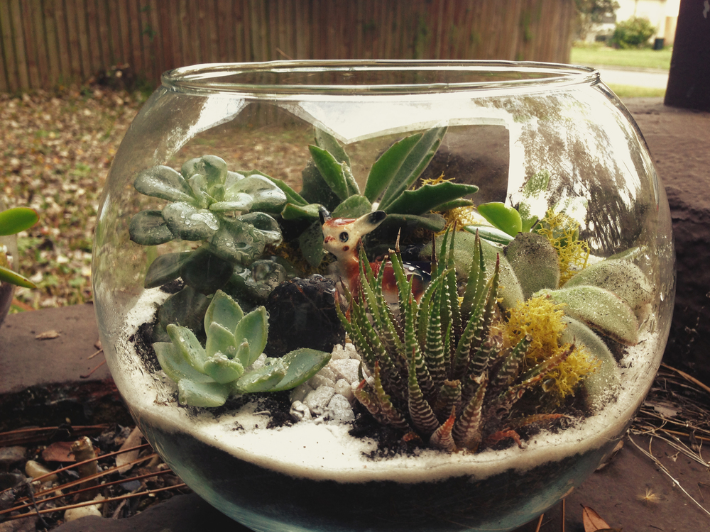Cute Deer Terrarium made for Virginia Ross Vintage