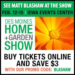 Matt Blashaw   Squarespace