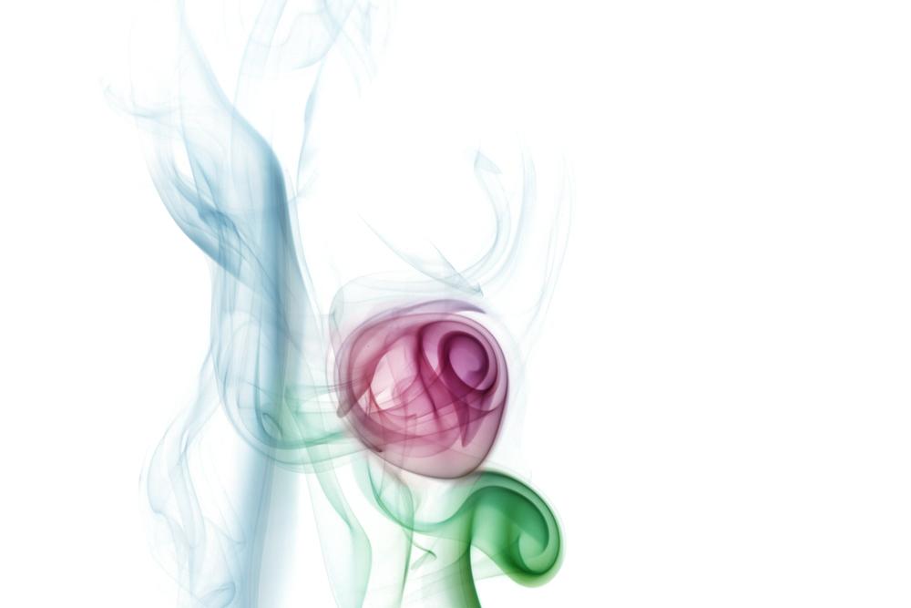 Smoke Rose.jpg