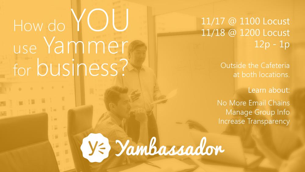 Promo TV Flyer - Yambassador.png