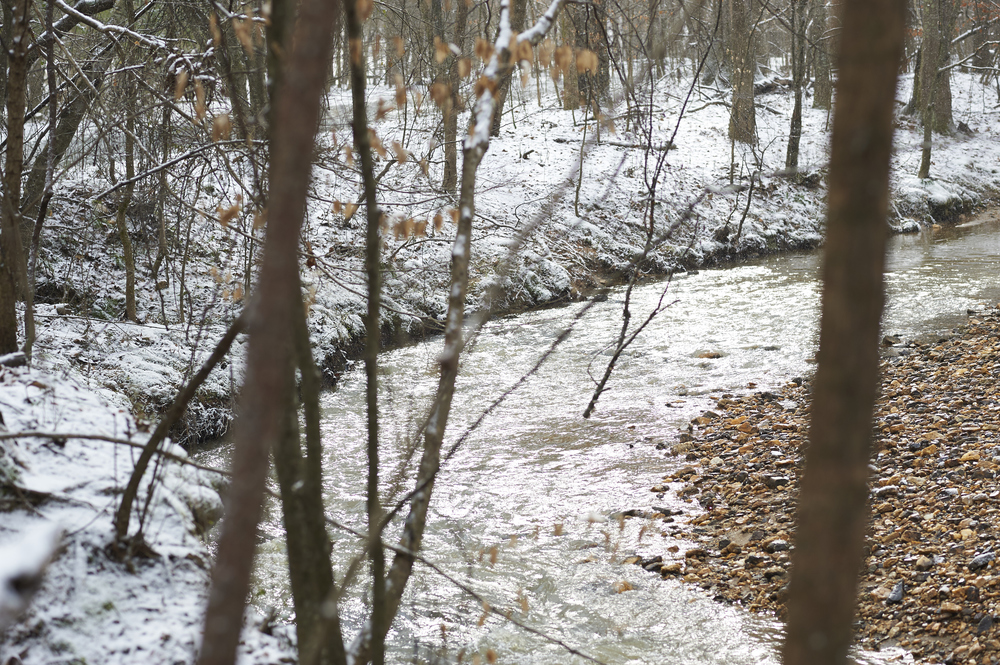 snowy creek_itstheeveryday.com.png