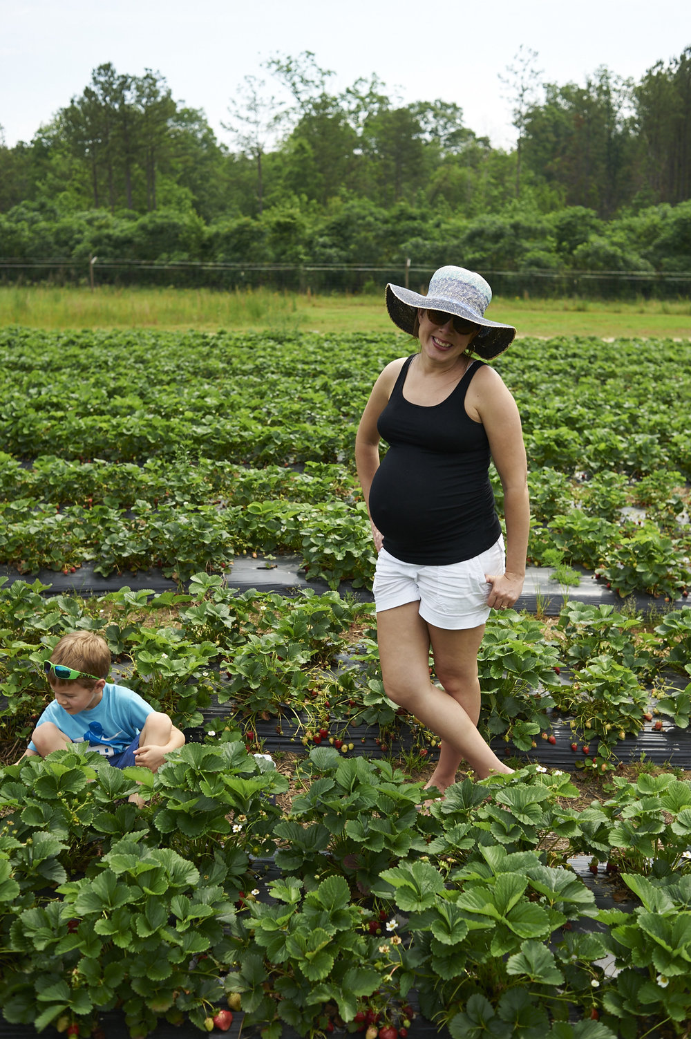 strawberry picking, lccl farm, rome, GA, family, lifestyle photography, its the everyday, pregnancy, 35 weeks