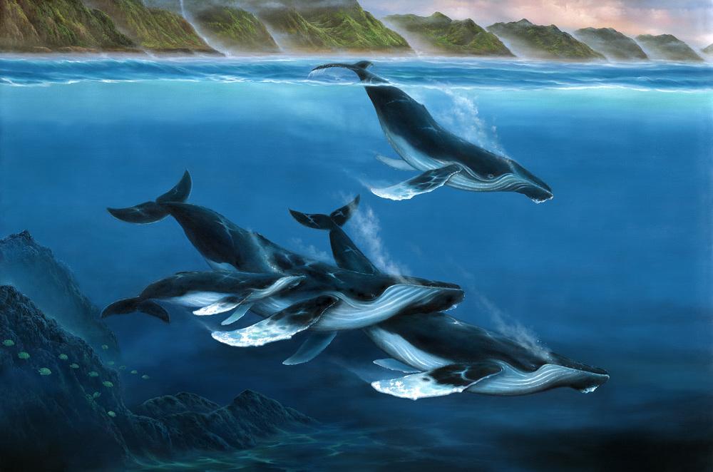 """Humpback Whales"" 30x45"