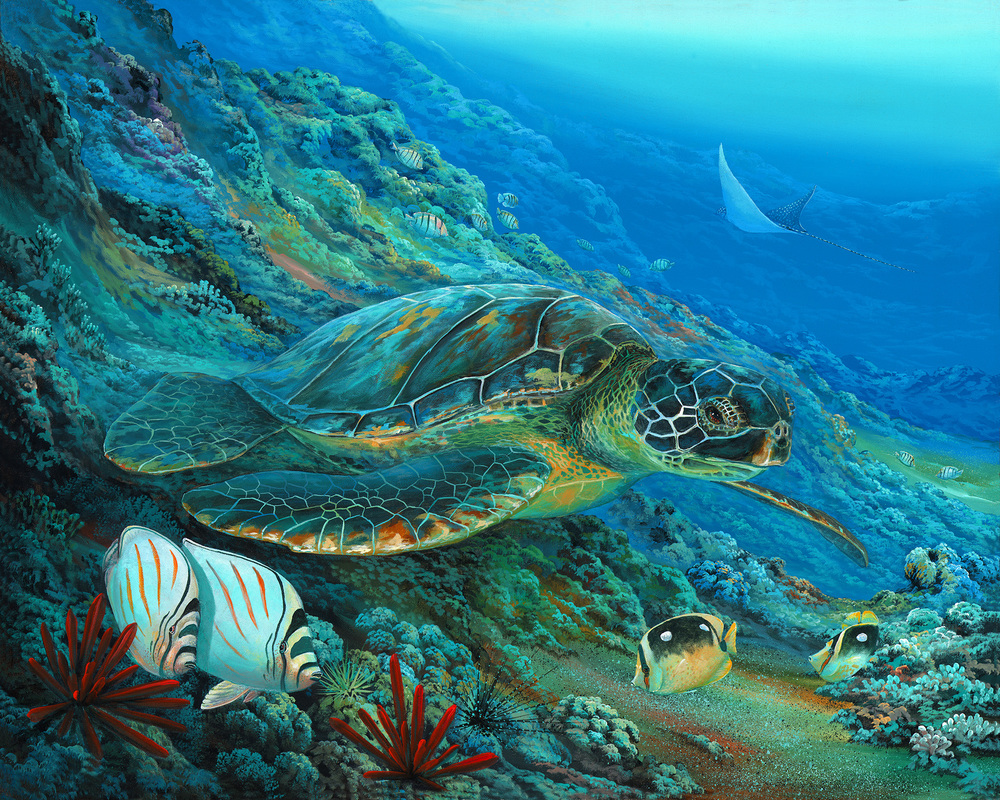 """Large Green Sea Turtle"" 24x30"