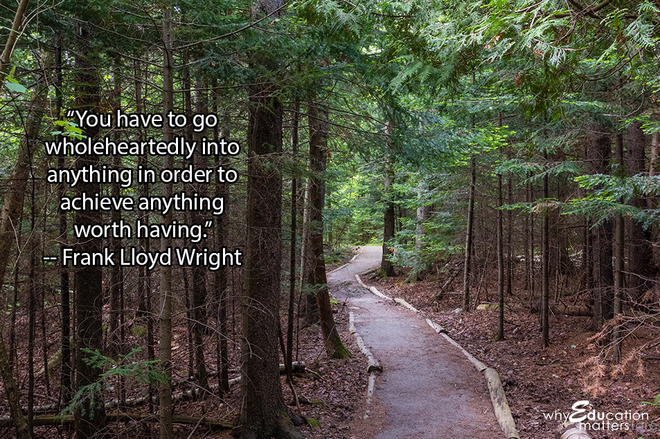 """You have to go wholeheartedly into anything in order to achieve anything worth having."" -- Frank Lloyd Wright"