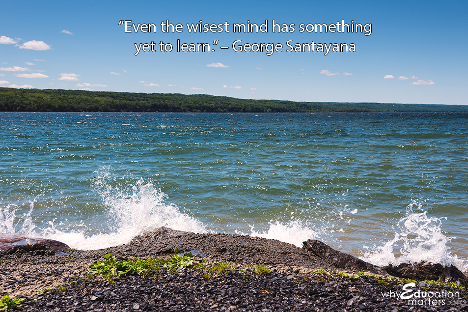 """Even the wisest mind has something yet to learn."" – George Santayana"