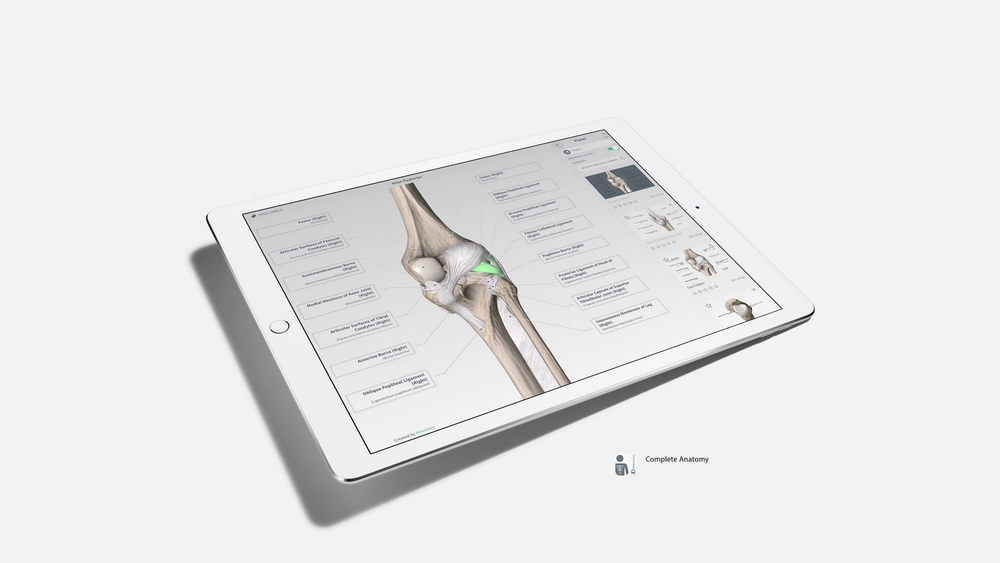 iPad-Pro-Apps-Complete-Anatomy.jpg